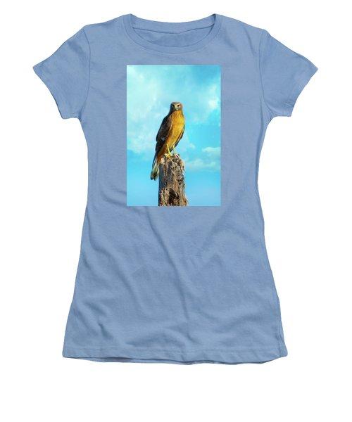 Northern Harrier Hawk Women's T-Shirt (Athletic Fit)