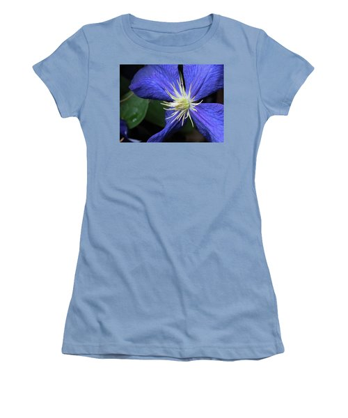 Purple Clematis Women's T-Shirt (Junior Cut) by Rebecca Overton