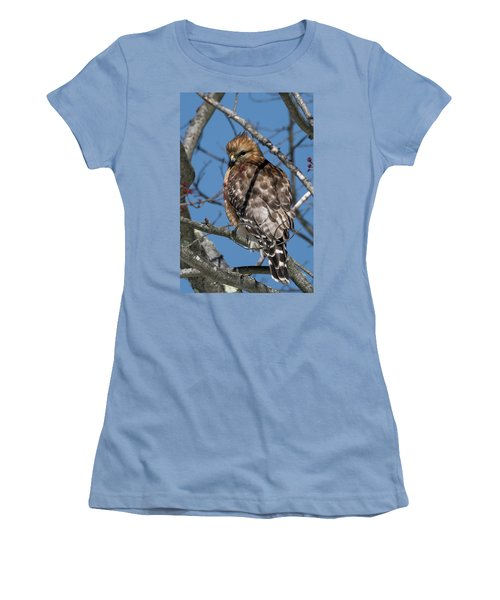 Women's T-Shirt (Junior Cut) featuring the photograph Red Shouldered Hawk 2017 by Bill Wakeley