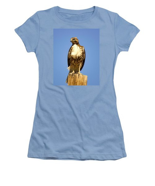 Red-tailed Hawk On Post Women's T-Shirt (Athletic Fit)