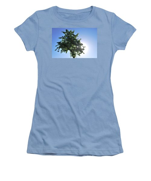 Single Tree - Sun And Blue Sky Women's T-Shirt (Junior Cut) by Matt Harang