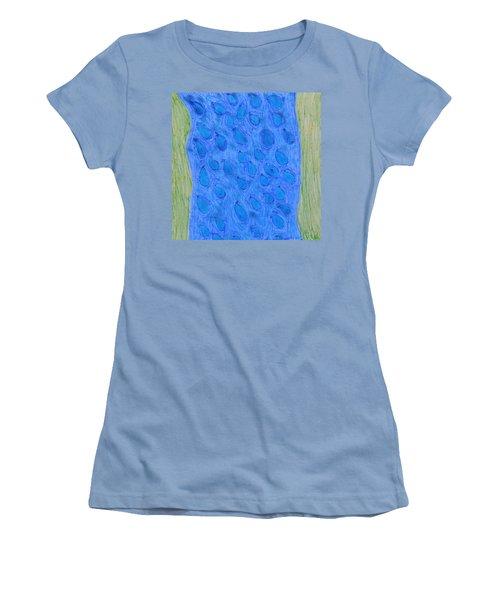 Stream Of Blessings Women's T-Shirt (Junior Cut)