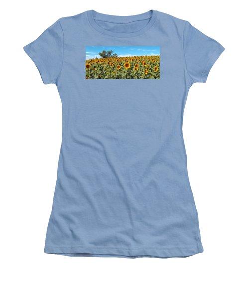 Sunflower Field One Women's T-Shirt (Junior Cut) by Barbara McDevitt