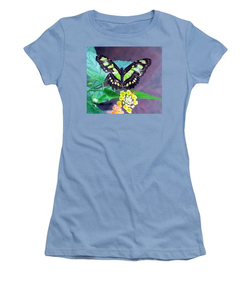 Tailed Jay Visits Lantana Women's T-Shirt (Athletic Fit)