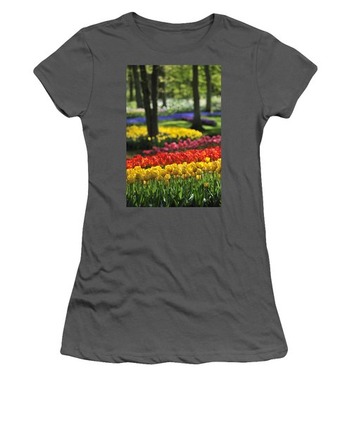 Women's T-Shirt (Junior Cut) featuring the photograph 090811p124 by Arterra Picture Library