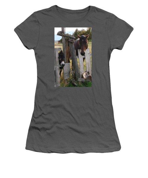 Women's T-Shirt (Junior Cut) featuring the photograph Horsing Around by Athena Mckinzie