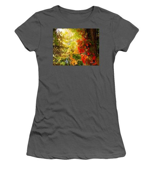 Minnesota Jungle Women's T-Shirt (Athletic Fit)