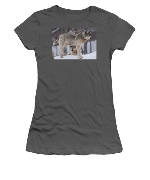 Timber Wolves  Women's T-Shirt (Athletic Fit)