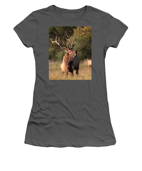 Bugling Bull Elk Women's T-Shirt (Athletic Fit)