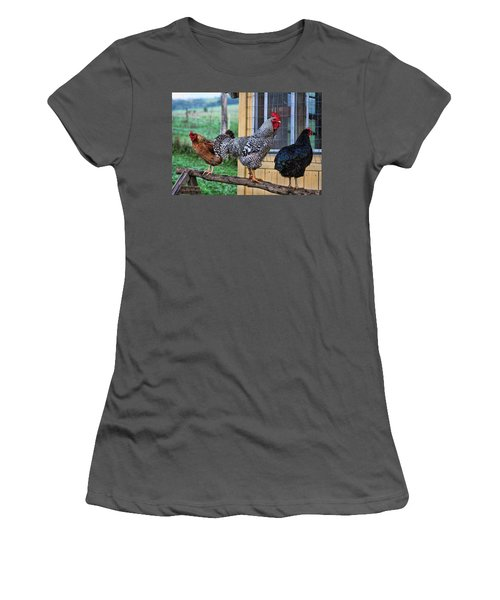 Women's T-Shirt (Junior Cut) featuring the photograph 3 Chickens by Denise Romano