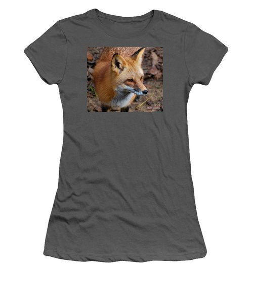 A Little Red Fox Women's T-Shirt (Athletic Fit)
