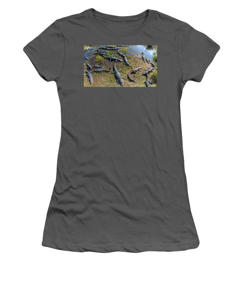 Alligators Along The Anhinga Trail Women's T-Shirt (Athletic Fit)