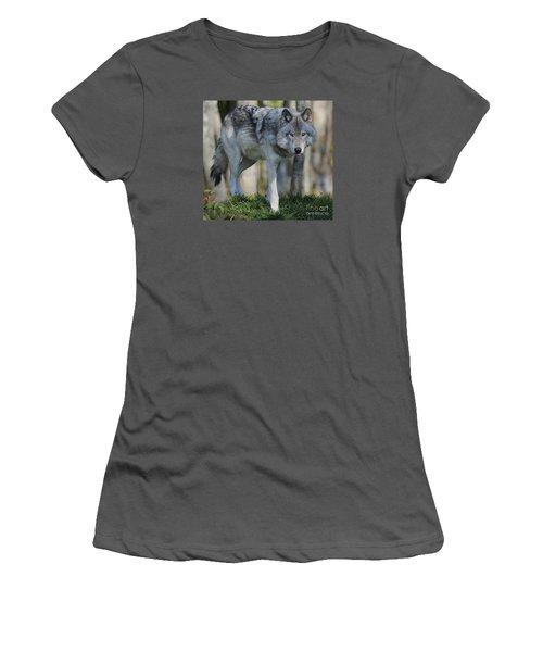 Alpha... Women's T-Shirt (Athletic Fit)