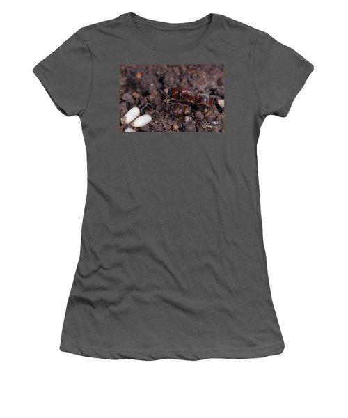 Ant Queen Fight Women's T-Shirt (Junior Cut) by Gregory G. Dimijian, M.D.