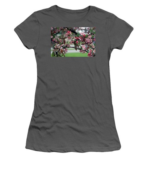 Women's T-Shirt (Junior Cut) featuring the photograph Apple Blossom Time by Kay Novy