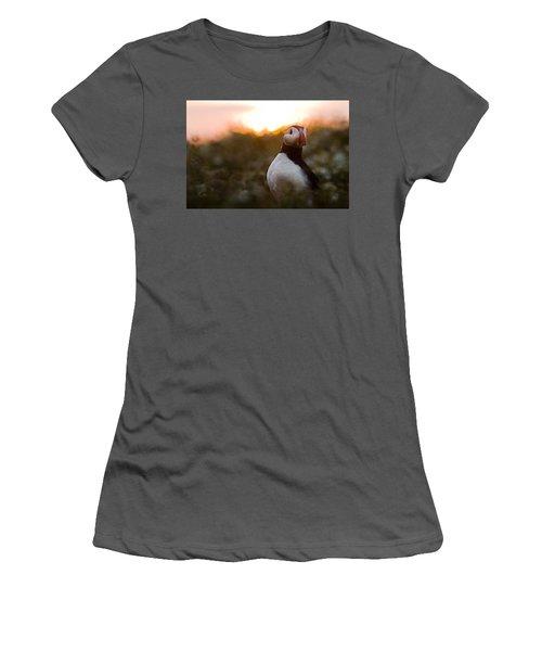 Atlantic Puffin At Sunrise Skomer Women's T-Shirt (Junior Cut) by Sebastian Kennerknecht