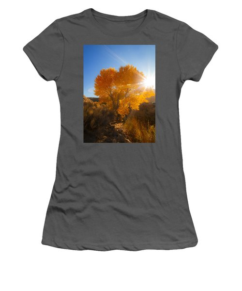 Autumn Golden Birch Tree In The Sun Fine Art Photograph Print Women's T-Shirt (Athletic Fit)