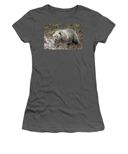 Women's T-Shirt (Junior Cut) featuring the photograph Autumn Grizzly by Jack Bell