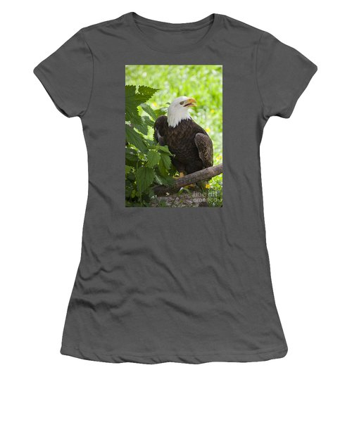 Bald Eagle Women's T-Shirt (Athletic Fit)