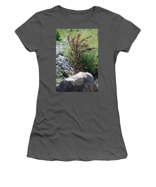 Beauty Is Everywhere Women's T-Shirt (Athletic Fit)