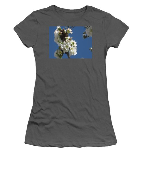 Bee On Cherry Blossoms Women's T-Shirt (Athletic Fit)