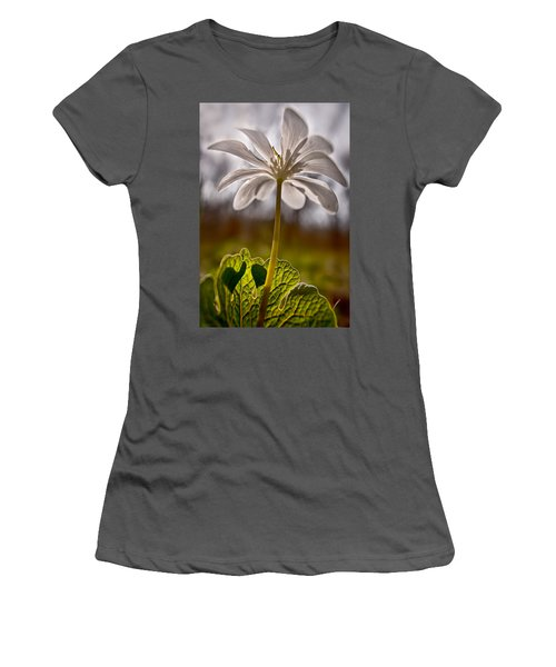 Bloodroot Women's T-Shirt (Athletic Fit)