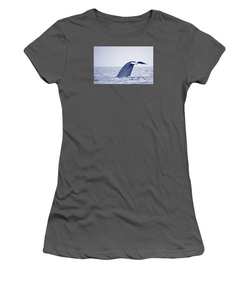 Women's T-Shirt (Junior Cut) featuring the photograph Blue Whale Tail Fluke With Remoras by Liz Leyden