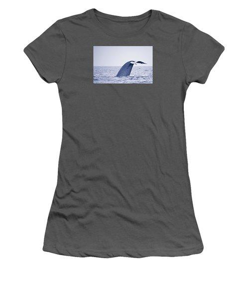 Blue Whale Tail Fluke With Remoras Women's T-Shirt (Junior Cut) by Liz Leyden