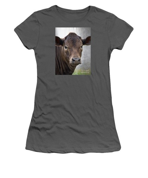 Women's T-Shirt (Junior Cut) featuring the photograph Brown Eyed Boy - Calf Portrait by Ella Kaye Dickey