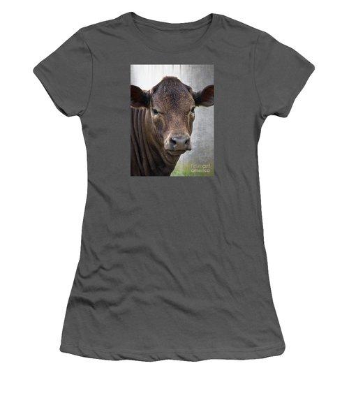 Brown Eyed Boy - Calf Portrait Women's T-Shirt (Athletic Fit)