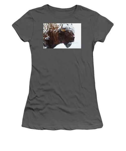 Buffalo Nickel Women's T-Shirt (Junior Cut) by Jim Garrison