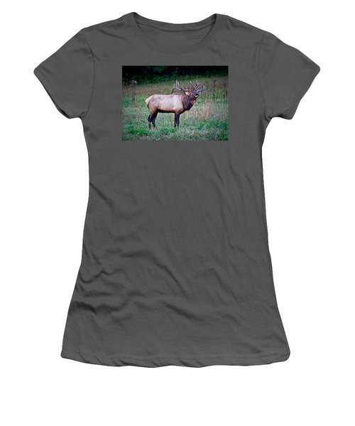 Women's T-Shirt (Junior Cut) featuring the photograph Bugle Solo From Bull Elk by John Haldane