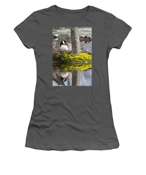 Canada Goose On Nest Women's T-Shirt (Junior Cut) by Michael Cummings