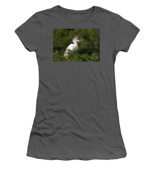 Cattle Egret No. 5 Women's T-Shirt (Athletic Fit)