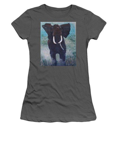 Charge Women's T-Shirt (Junior Cut) by Catherine Swerediuk