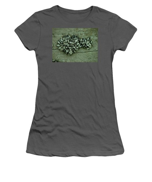 Clam Shells Women's T-Shirt (Athletic Fit)