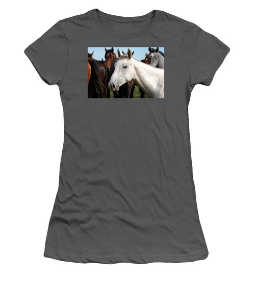 Close-up Herd Of Horses. Women's T-Shirt (Athletic Fit)