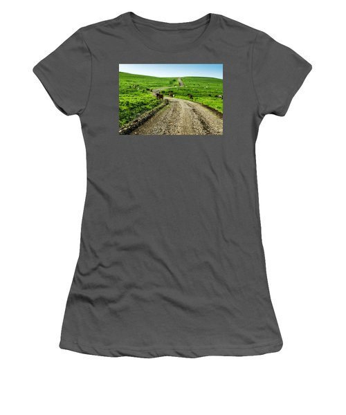 Cows On The Road Women's T-Shirt (Athletic Fit)