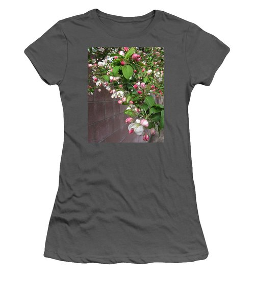 Crabapple Blossoms And Wall Women's T-Shirt (Junior Cut) by Donald S Hall