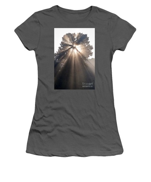 Crepuscular Rays Coming Through Tree In Fog At Sunrise Women's T-Shirt (Athletic Fit)
