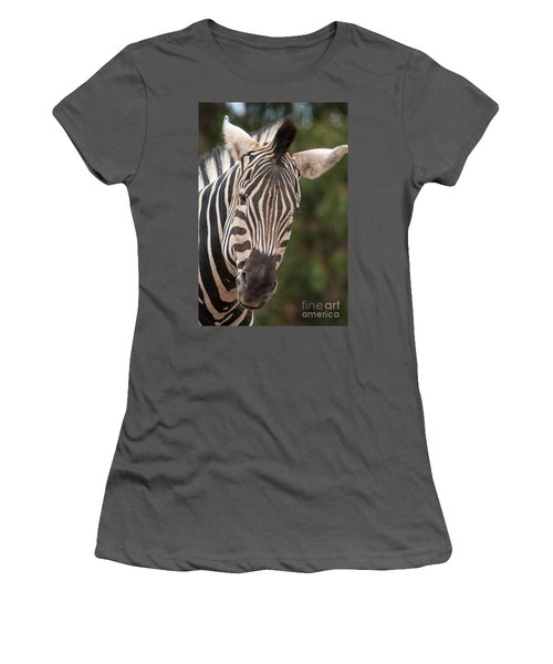 Curious Zebra Women's T-Shirt (Athletic Fit)