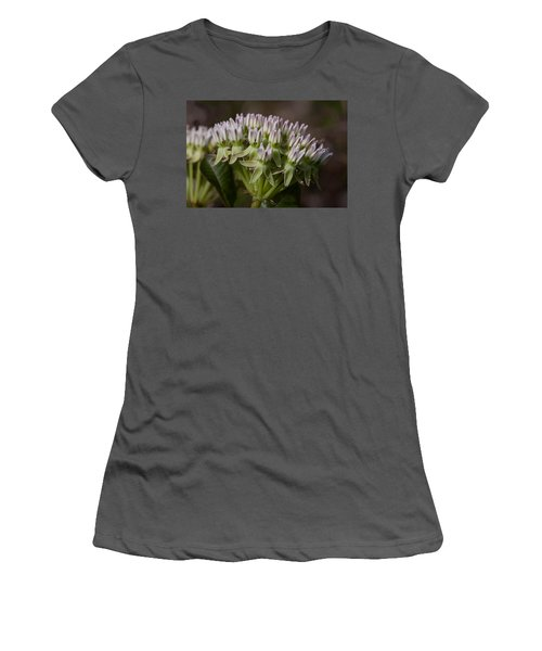 Women's T-Shirt (Junior Cut) featuring the photograph Curtiss' Milkweed #3 by Paul Rebmann