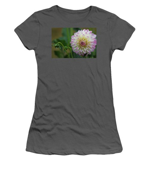 Dahlia In The Mist Women's T-Shirt (Athletic Fit)