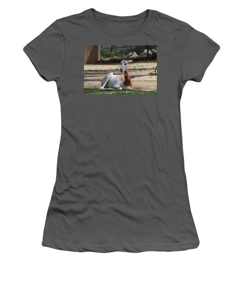 Dama Gazelle Women's T-Shirt (Junior Cut) by DejaVu Designs