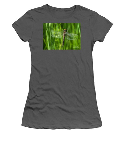 Dragonfly On Grass Women's T-Shirt (Athletic Fit)