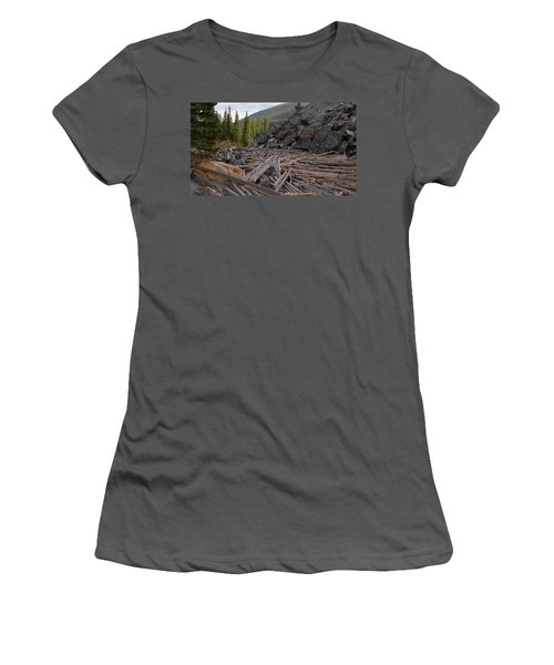 Driftwood And Rock Women's T-Shirt (Athletic Fit)