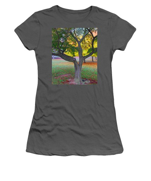 Women's T-Shirt (Junior Cut) featuring the photograph Fall Color by Lisa Phillips