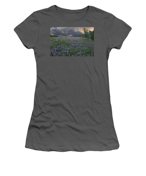 Field Of Lupine Women's T-Shirt (Junior Cut) by Ed Hall