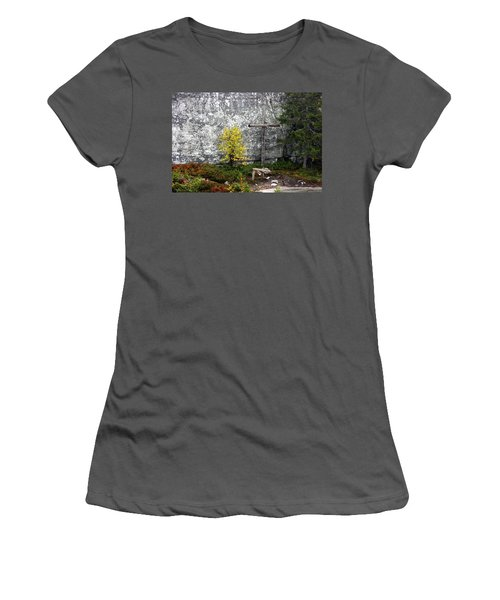 Forest Altar Women's T-Shirt (Junior Cut) by Leena Pekkalainen