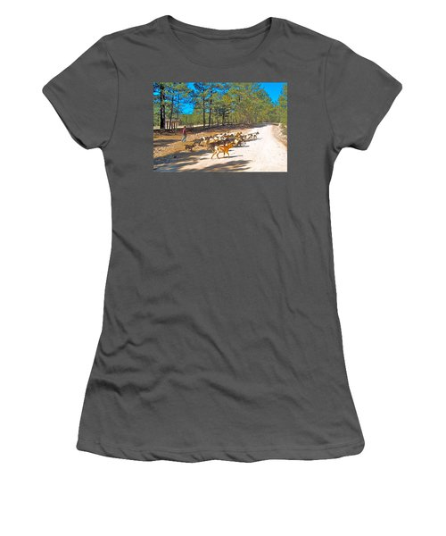 Goats Cross The Road With Tarahumara Boy As Goatherd-chihuahua Women's T-Shirt (Athletic Fit)